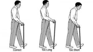 Walking stick length