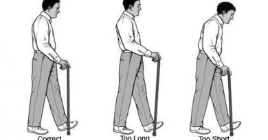 Walking Stick Tips and the Correct Length
